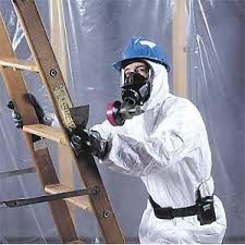 Mould removal company Montreal