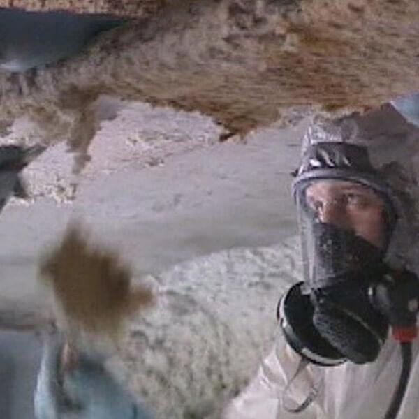 Entrepreneur général - enlèvement amiante plafonds - RénoVert