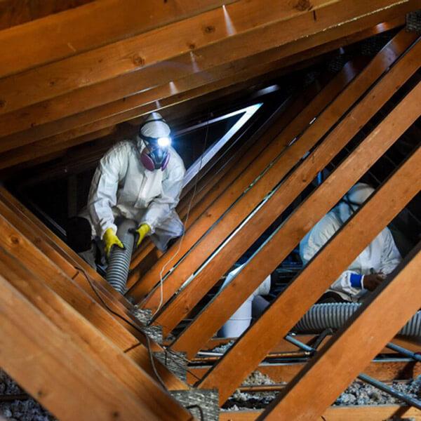 Entrepreneur général - décontamination vermiculite Québec 02 - RénoVert