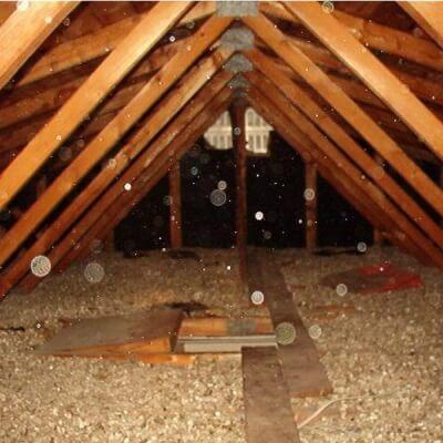 Entrepreneur général - décontamination vermiculite Montréal 02 - RénoVert