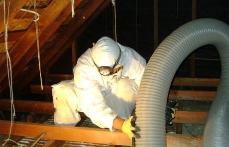 Prix - décontamination vermiculite Québec - RénoVert