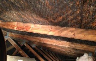 Moisissures dans l'entre toit