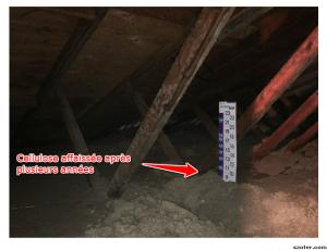 Isolation à la cellulose dans l'entre-toit