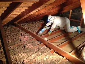 Décontamination de vermiculite dans l'entretoit, Saint-Hyacinthe