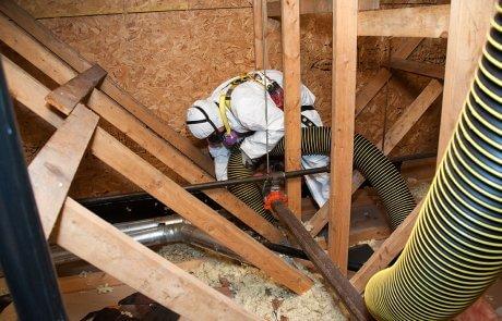 Entrepreneur en décontamination de vermiculite à Joliette